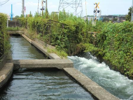 分水路と本流