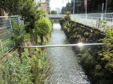 今泉小付近排水路