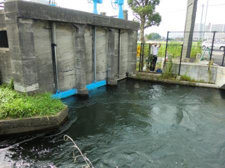排水用水門