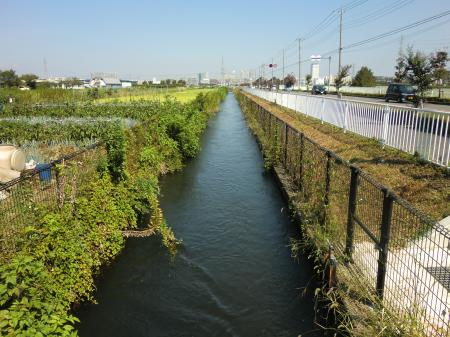 左岸用水・食の創造館付近