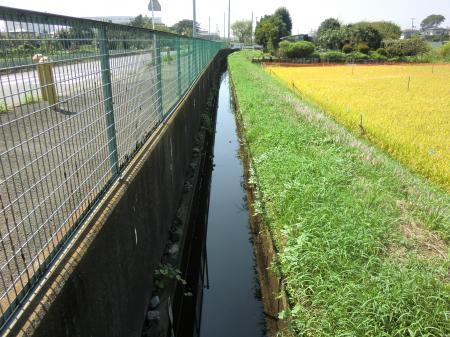 小動神社付近支線用水路