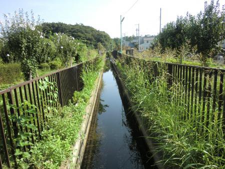 水と花・下寺尾区間