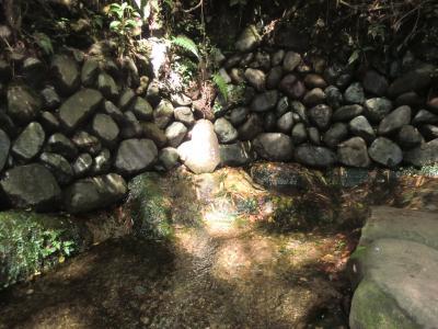 大島水場のヤツボ