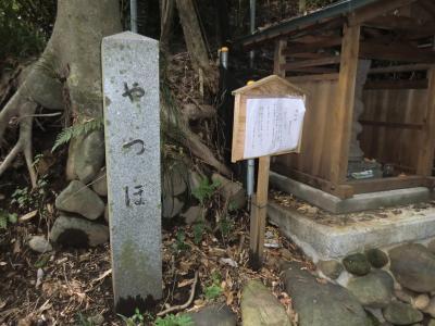 ヤツボの碑と龍蛇神