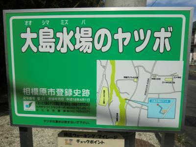大島水場のヤツボ看板