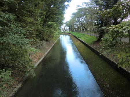 堂橋から下流を望む