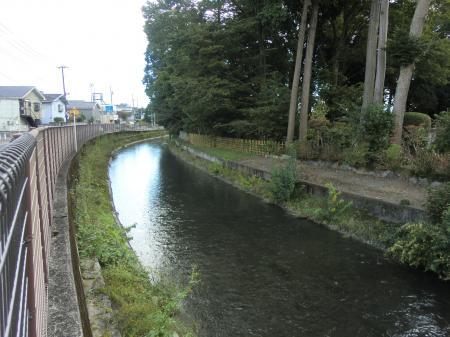宮本橋から下流を望む