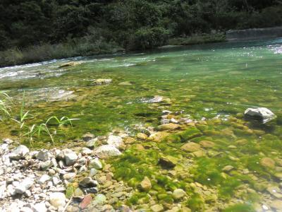 中津川取水堰下流