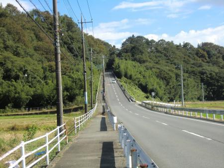 中津川河岸段丘崖手前