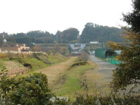 境川左岸より横須賀水道みち下流方向を望む