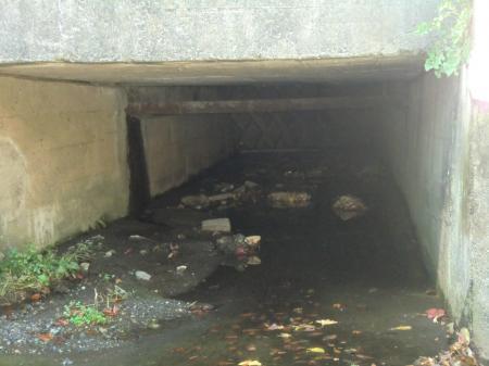 横須賀水道みち・殿入川