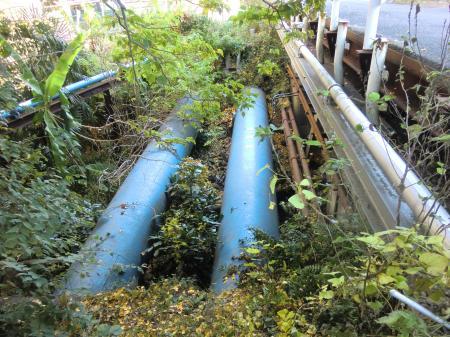 小河川を渡る水管橋・横横道路下