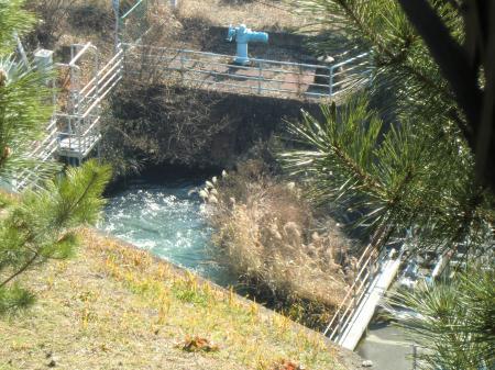 津久井分水池取水口