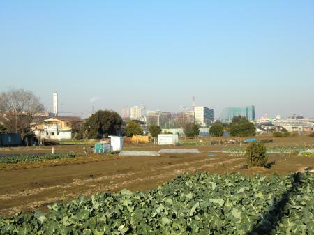 県営水道みちから橋本方面を望む