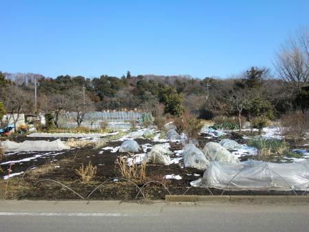 神奈川県営水道みち・七曲下付近