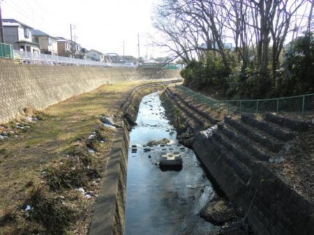 鳩川水管橋より下流を望む
