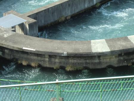 下九沢分水池・内槽と外槽