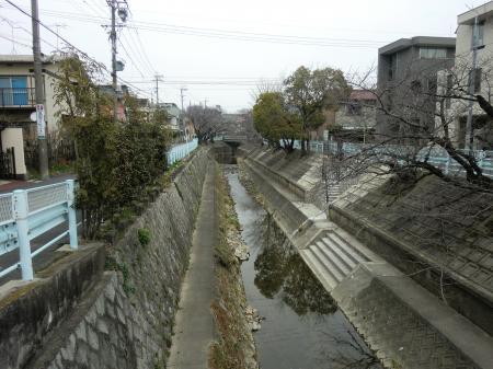 山崎川・大島7号橋より上流を望む
