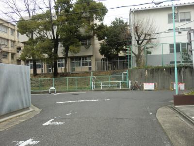 山崎川支流・名大付近