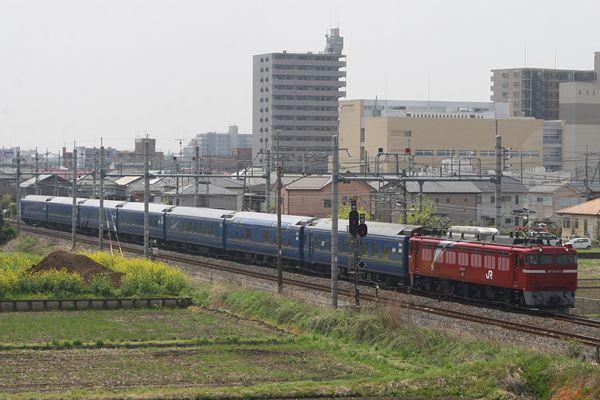 EF81133+24系