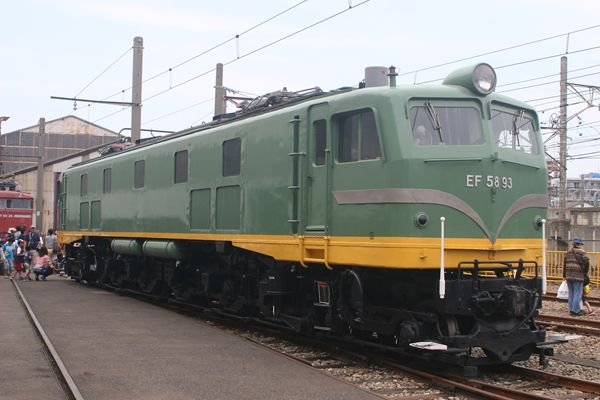 EF5893 青大将☆