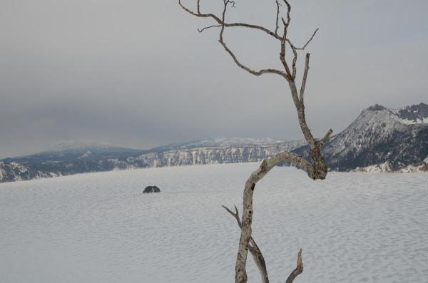 摩周湖 歩いた割には景色が変わらない