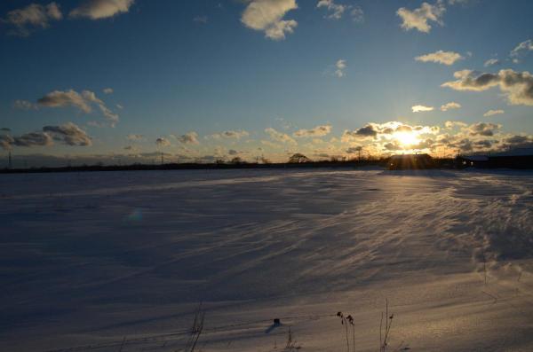 雪原に吹く風・・・