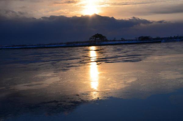 一本松の朝陽