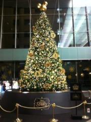 mickey cristmas tree