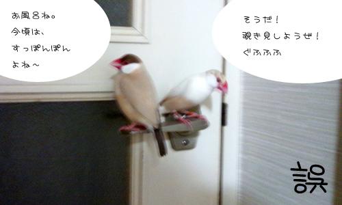 入浴中_1