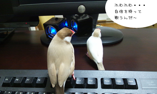 動画でお勉強_2