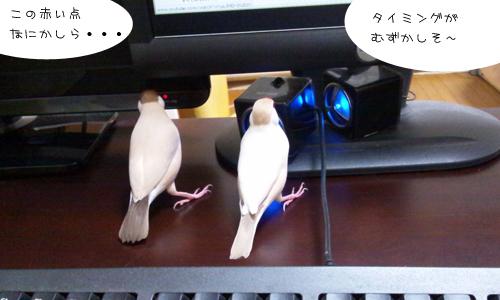 動画でお勉強_4