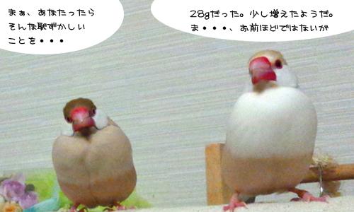 昭和な風景_3