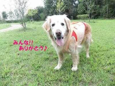 daisuki7.jpg
