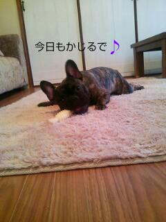20120507_205835.jpg