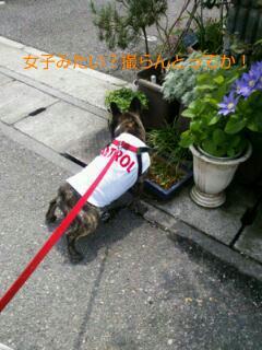 20120508_105913.jpg