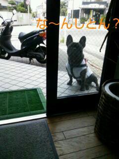20120508_110432.jpg