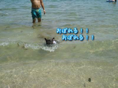20120902223114.jpg