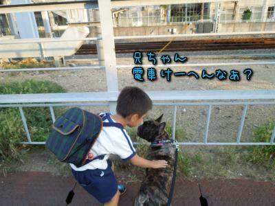 20121010115459.jpg