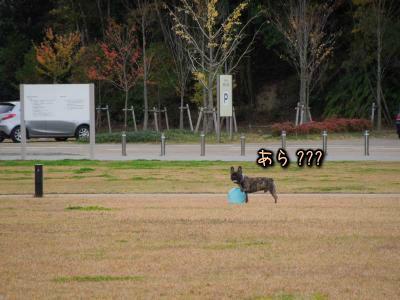 20121110210742.jpg