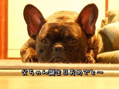 20121220214645.jpg
