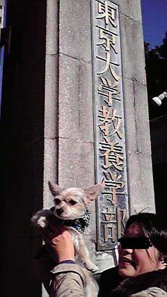 そら 東大駒場祭 門 20121125