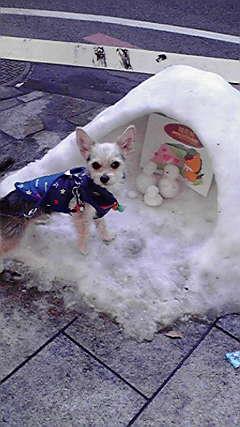 雪のかまくら