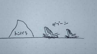 2014.1.31トンバラザトウクジラ
