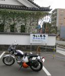 009_20121105104821.jpg