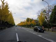 010_20121213153146.jpg
