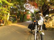 036_20121204004104.jpg