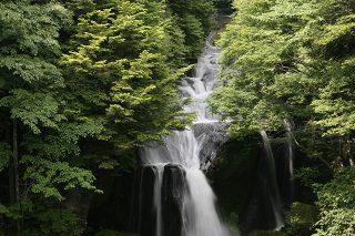竜頭の滝1518-taki-nikkou03