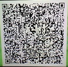 sq4_qr1.jpg