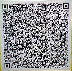 sq4_qr7.jpg